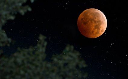 Ученые считают, что лунное